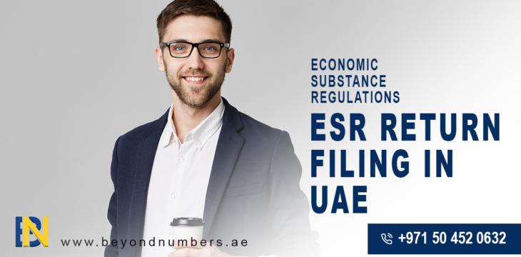 ESR Return Filing in UAE- Economic Substance Regulations